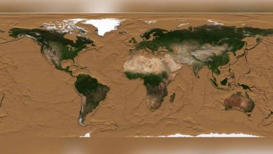 with-help-of-nasa-video,-scientist-reveals-how-earth-would-look-if-oceans-were-drained